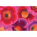 Spring gloxinias pink - 22