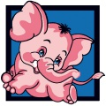 Elephant - 47