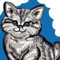 Kit soudan 25/25 Chat gris - 47