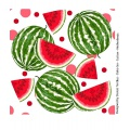 Tissu jersey double bord Stenzo water melons - 474