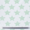 Tissu stenzo jersey étoile menthe blanc - 474