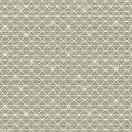 Enduit 100%cot 120g l156cm triangle lichen glacé - 74
