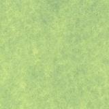 Feutrine 5u de 30/45cm pistache - 105
