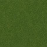 Feutrine 5u de 30/45cm lichen - 105