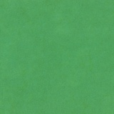 Feutrine Cinnamon Patch x 5u 30/45cm forêt - 105