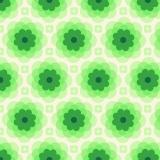 Florabelle-echo bloom-taos - 22