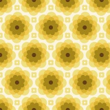 Florabelle-echo bloom-tucson - 22