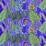 Fall 2017 coleus lavender - 22