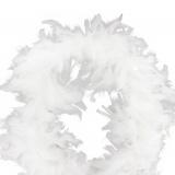 Boa moyen plumes déchirées 1,90m blanc