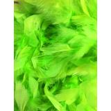 Boa moyen plumes déchirées 1,90m vert fluo