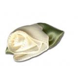 Fleur grand modèle x 100 écru/vert