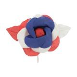 Camélia tricolore - 399