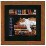 Kit au pt compté chat dormant sur étagère aida - 4
