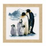 Kit au point compté famille de pingouin aida - 4