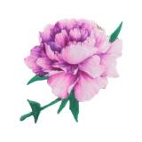 Thermocollant autocollant fleur 6,5 x 10,5 cm - 408