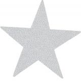 Thermo étoile (une dans le sachet) 9 x 10 cm - 408