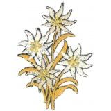 Thermocollant fleurs 7 x 4,5 cm - 408