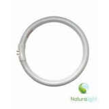 Tube circulaire naturalight de 22w - 416