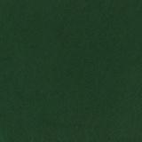 Feutrine 20/30cm x10u vert