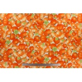 Tissu quilting treasures Harvest bounty - 462