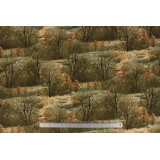 Tissu quilting treasures Wild pheasants - 462