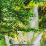 Tissu quilting treasures la cascade panel - 462