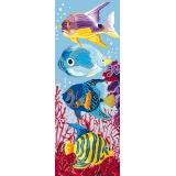 Aquarium - 47