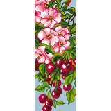Cerisier - 47
