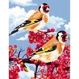 Canevas antique 50/65 reves d'oiseaux - 47