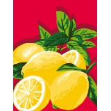 Kit canevas bl 25/30 citrons - 47