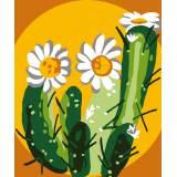 Cactus - 47
