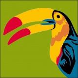 Kit canevas soudan 20/20cm oiseau - 47