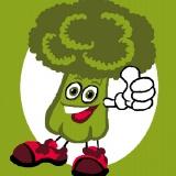 Kit soudan 25/25 brocoli - 47