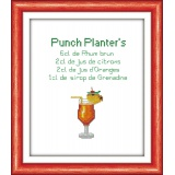 Kit pt compte 5.5 blanc punch planter's - 47