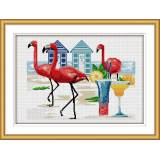 Flamants roses - 47