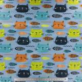 Jersey imprimé stenzo crazy cats bio coton 150cm - 474