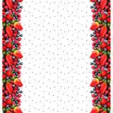 Jersey Stenzo digital border print - 474