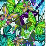 Jersey Stenzo digital print butterfly - 474