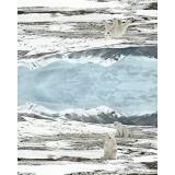 Panneau jersey dp ours blanc 120x150cm - 474