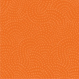 Tissu Dashwood coton twist pumpkin - 476