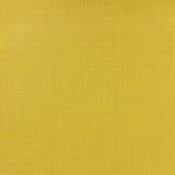 Tissu enduit lin livi curry 150cm - 494