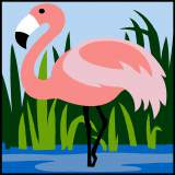 Flamant rose - 55