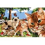Chats au jardin - 55