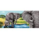 Le lac aux elephants - 55