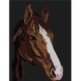 Tableau cheval - 55