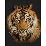 Tableau tigre - 55