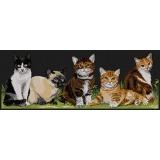 Tableau les chatons - 55