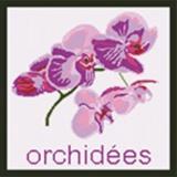 Tableau orchidées - 55