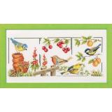 Les oiseaux du jardin - 55