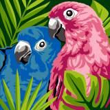 Kit coussin 40/40 Oiseaux de couleur - 55
